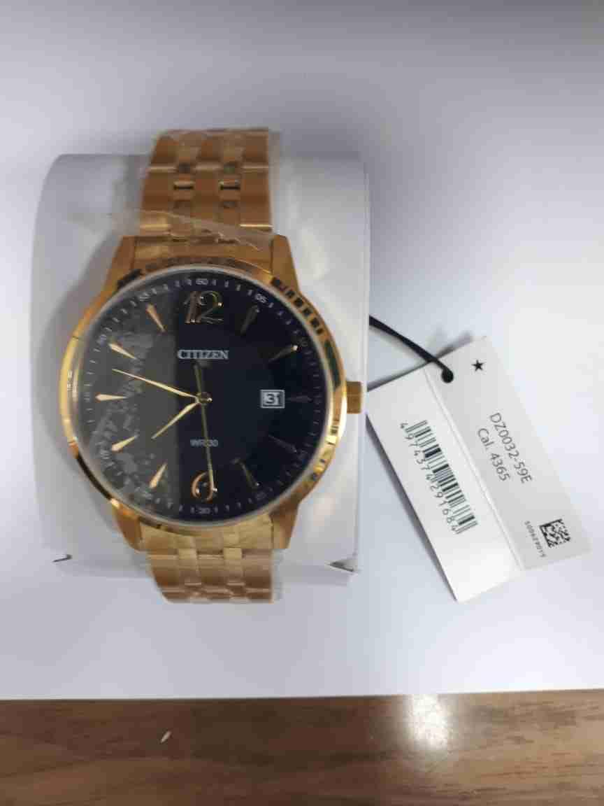 citizen-dz-0032-59p-golden-black-analog-watch
